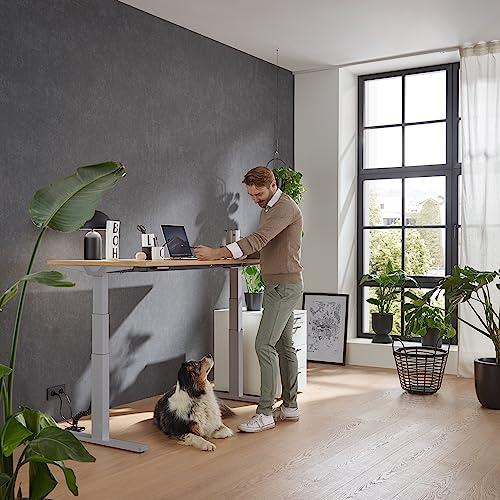 boho Premium Line – elektrisch höhenverstellbares Tischgestell - 2